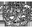 Teatro Degli Olivi